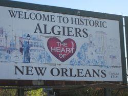Algiers Trple Strength Oil